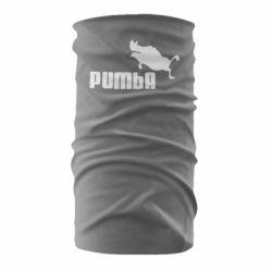 Бандана-труба Pumba