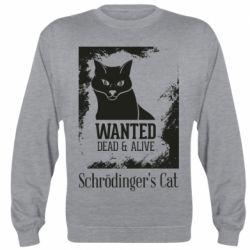 Реглан (світшот) Schrödinger's cat is wanted