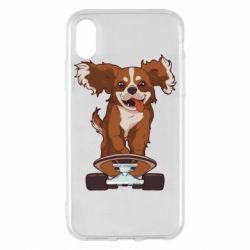 Чехол для iPhone X/Xs Собака Кавалер на Скейте