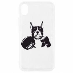 Чохол для iPhone XR Собака в боксерських рукавичках