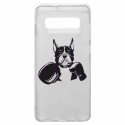 Чохол для Samsung S10+ Собака в боксерських рукавичках