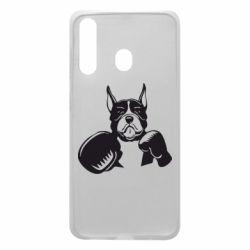 Чохол для Samsung A60 Собака в боксерських рукавичках