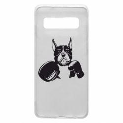 Чохол для Samsung S10 Собака в боксерських рукавичках