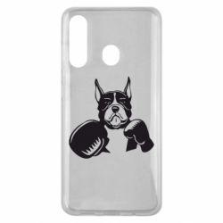 Чохол для Samsung M40 Собака в боксерських рукавичках