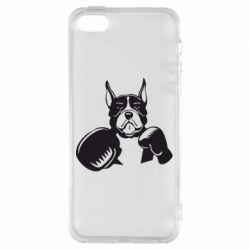 Чохол для iphone 5/5S/SE Собака в боксерських рукавичках