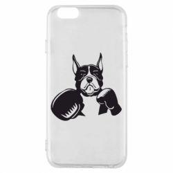 Чохол для iPhone 6/6S Собака в боксерських рукавичках