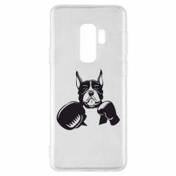 Чохол для Samsung S9+ Собака в боксерських рукавичках