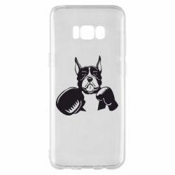 Чохол для Samsung S8+ Собака в боксерських рукавичках