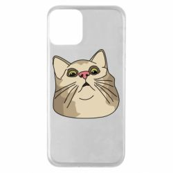 Чехол для iPhone 11 Surprised cat