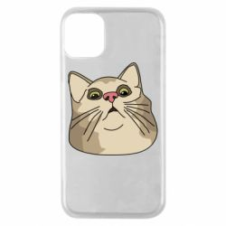 Чехол для iPhone 11 Pro Surprised cat