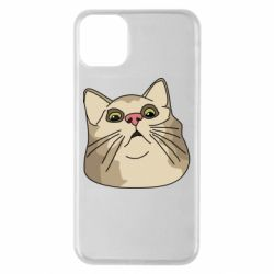 Чехол для iPhone 11 Pro Max Surprised cat