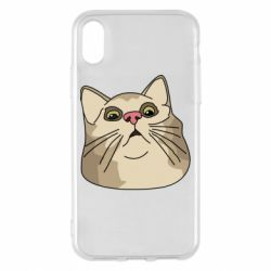 Чехол для iPhone X/Xs Surprised cat