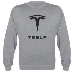 Реглан (свитшот) Tesla Logo - FatLine