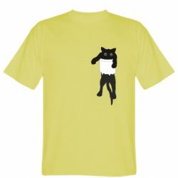 Мужская футболка The cat tore the pocket