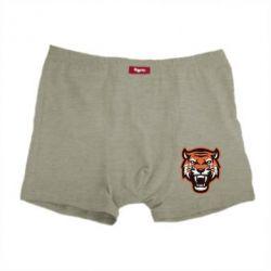 Чоловічі труси Tiger
