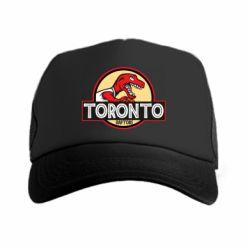 Кепка-тракер Toronto raptors park