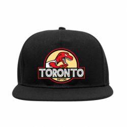 Снепбек Toronto raptors park