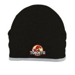 Шапка Toronto raptors park