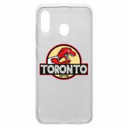 Чехол для Samsung A20 Toronto raptors park