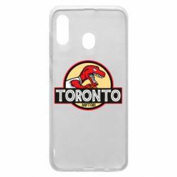 Чехол для Samsung A30 Toronto raptors park