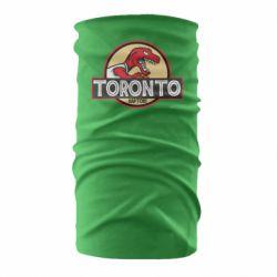 Бандана-труба Toronto raptors park