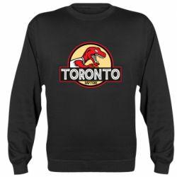 Реглан (свитшот) Toronto raptors park