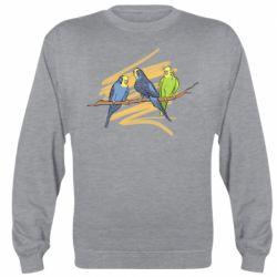 Реглан (свитшот) Волнистые попугайчики