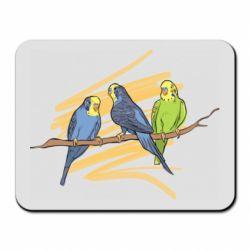 Коврик для мыши Волнистые попугайчики