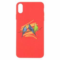 Чехол для iPhone X/Xs Волнистые попугайчики
