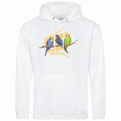 Мужская толстовка Волнистые попугайчики