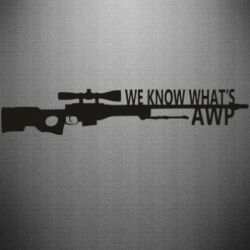 Наклейка We know what's awp