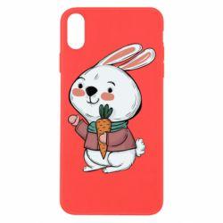 Чохол для iPhone Xs Max Winter bunny