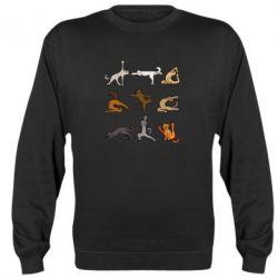 Реглан (світшот) Yoga cats - FatLine