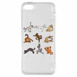Чохол для iphone 5/5S/SE Yoga cats - FatLine