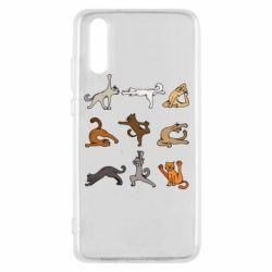 Чохол для Huawei P20 Yoga cats - FatLine