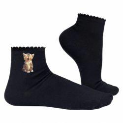 Жіночі шкарпетки Cute kitten vector
